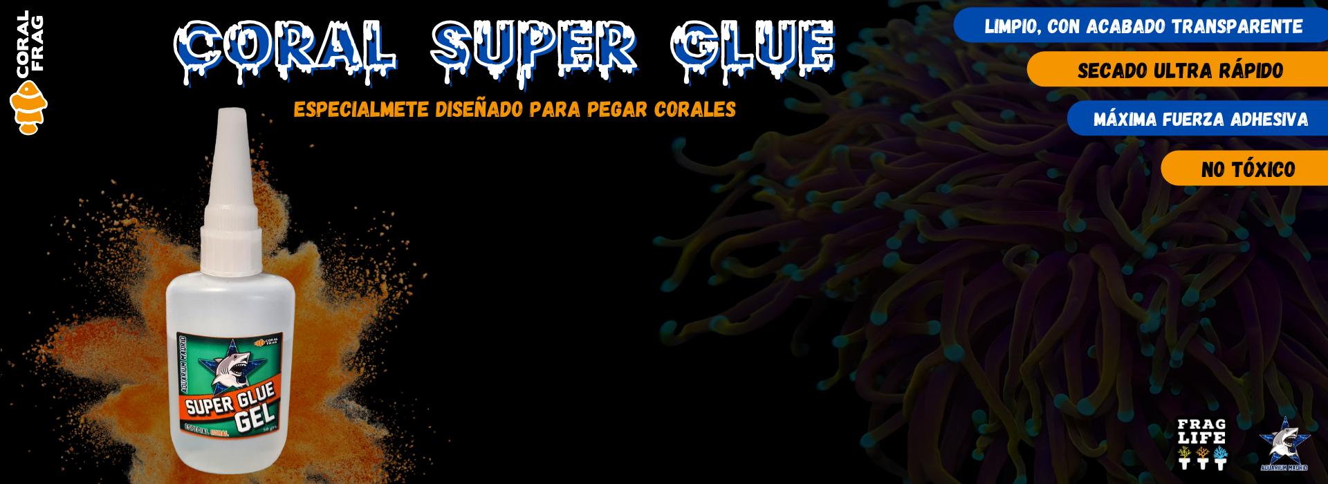 pegamento corales marinos